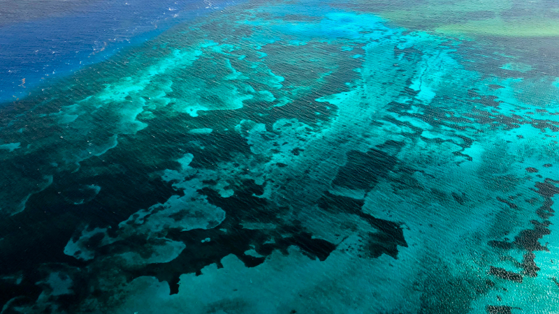 cozumel reef from the sky