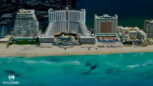 SeaWeed Sargasso Cancun Hotel Zone Now